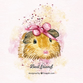 Lovely watercolor guinea pig