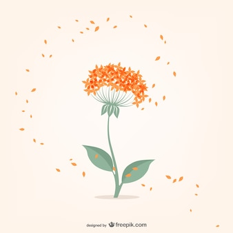 Minimal flower with orange small petals