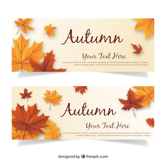 Modern autumn banners with realistic leaves