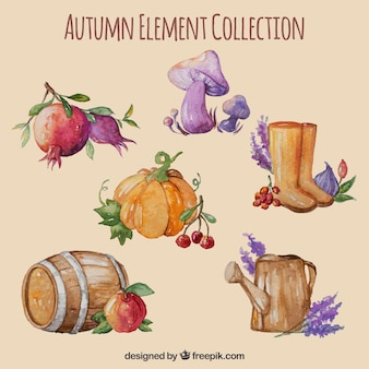 Modern pack of watercolor autumn elements