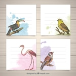 Modern set of watercolor cards with birds