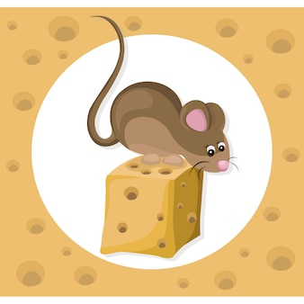 Mouse with cheese background