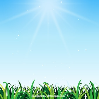 Natural background with grass in realistic design