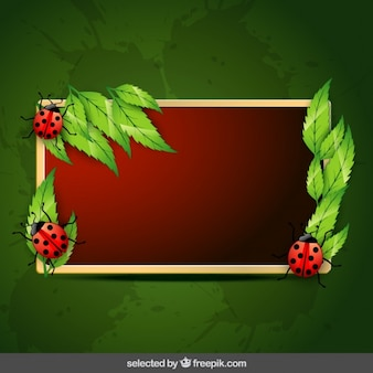 Natural frame with leaves and ladybugs