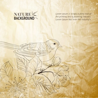 Nature background with a bird