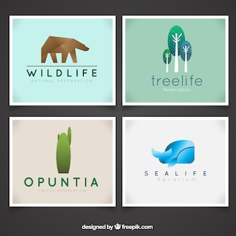 Nature cards in modern design