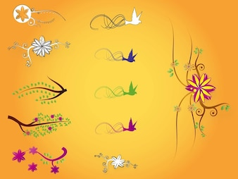 Nature flower colors vector illustrations