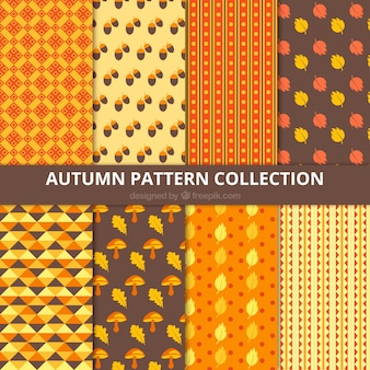 Nice collection of autumnal patterns