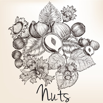 Nuts design background