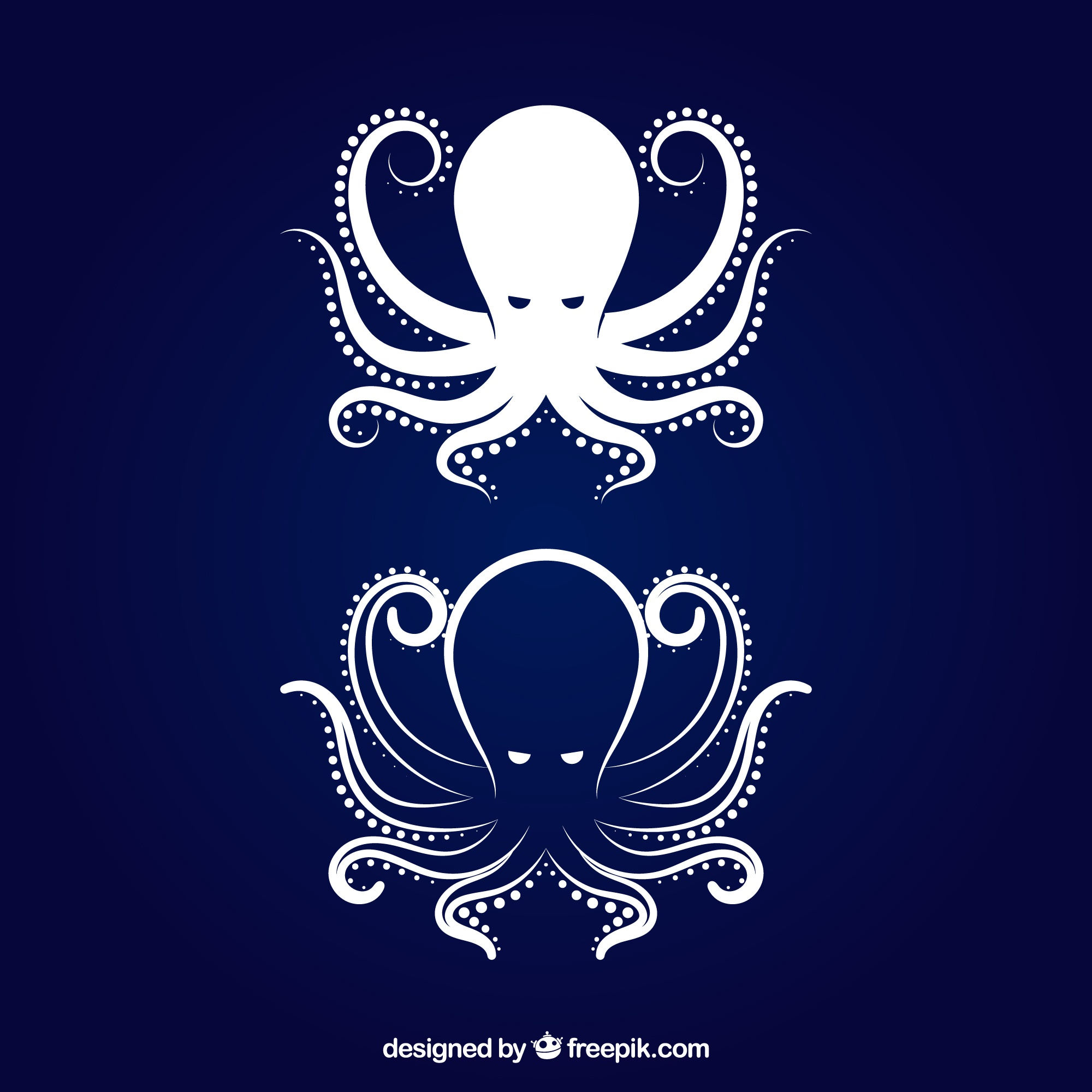 Octopus icon