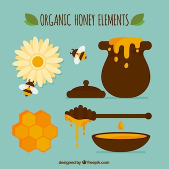 Organic honey equipment