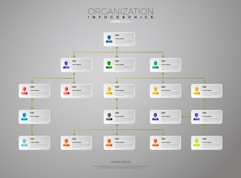 Organization infographic template