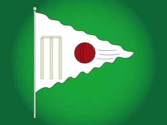 Outdoor cricket game flag vector