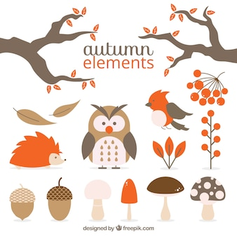 Pack of animals and autumnal natural elements