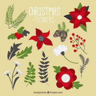 Pack of christmas flowers in flat style