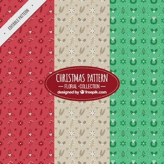 Pack of christmas patterns with floral elements