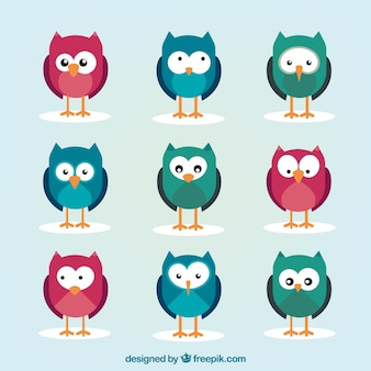 Pack of colored owls with variety of gestures
