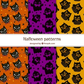 Pack of colorful patterns with halloween characters