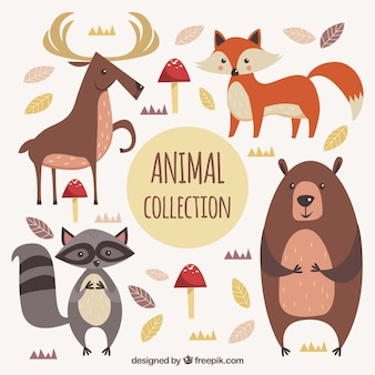Pack of cute animals from forest