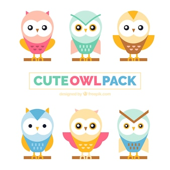 Pack of cute owls in pastel colors
