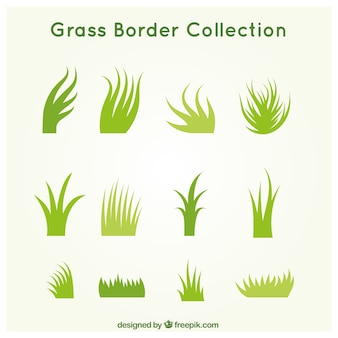 Pack of different grass