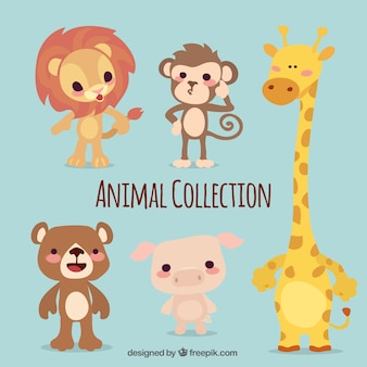 Pack of five cute animals