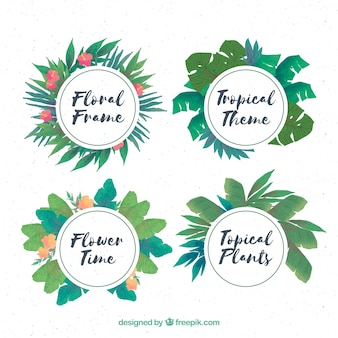 Pack of four floral watercolor frames