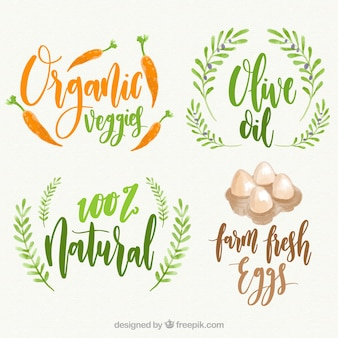 Pack of four organic food labels in watercolor style