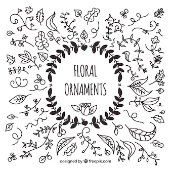 Pack of hand drawn floral ornaments