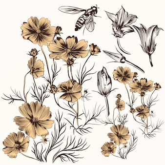 Pack of hand drawn flowers and bee