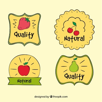 Pack of hand-drawn fruit stickers