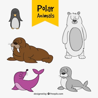Pack of hand-drawn polar animals