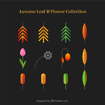 Pack of leaves and flowers in flat autumn design