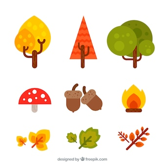 Pack of natural elements of autumn in flat design