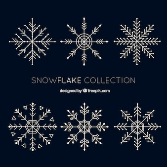 Pack of six fantastic snowflakes in flat design