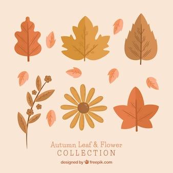 Pack of vintage autumn leaves