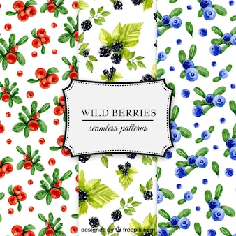 Pack of watercolor berries patterns
