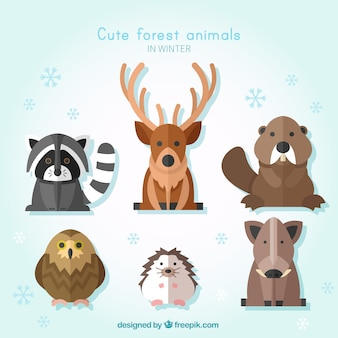 Pack of wild animals in flat design