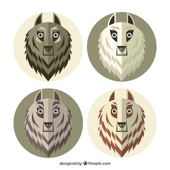 Pack of wolves in flat design