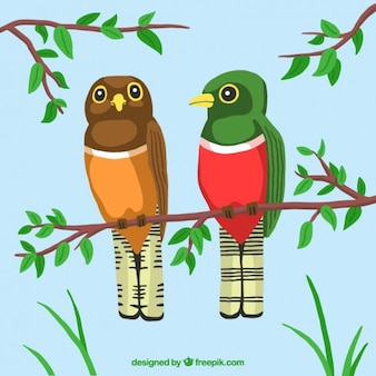 Pair of birds in a branch