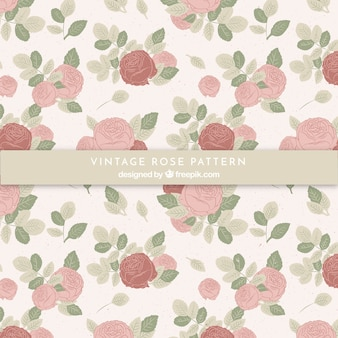 Pattern of vintage hand drawn roses
