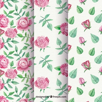 Patterns set of roses and vintage watercolor leaves