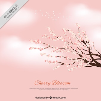 Pink background with clouds and branches with cherry blossoms