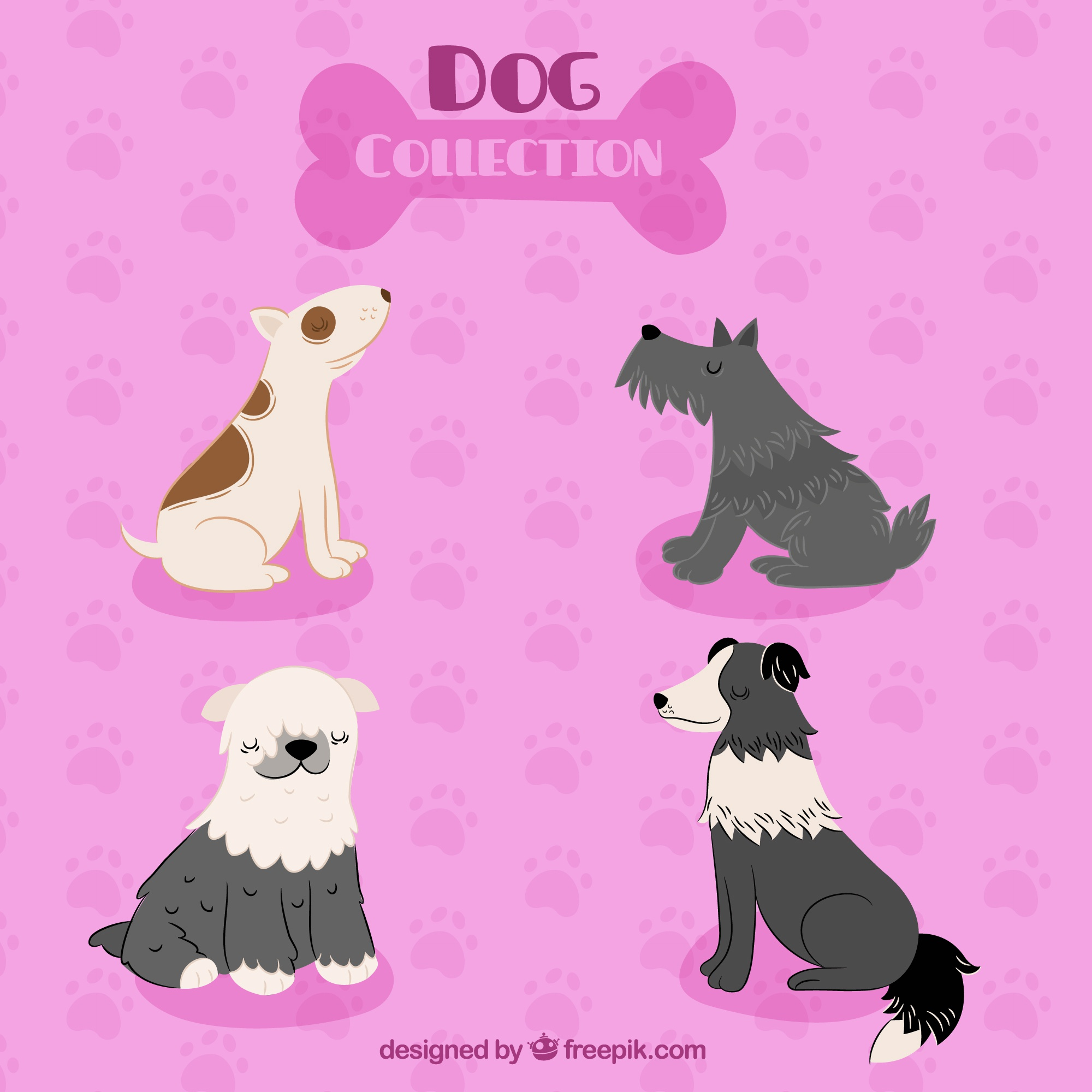 Pink background with four cute dogs