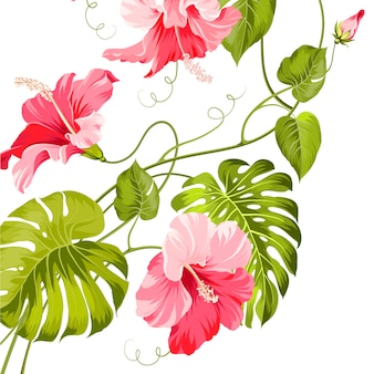 Pink flowers and green leaves background