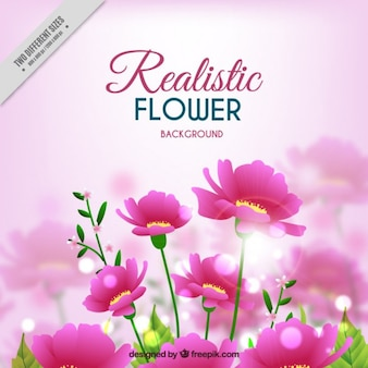 Pink flowers background in realistic style