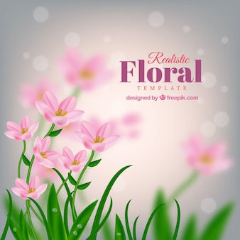 Pink flowers on a blurred background