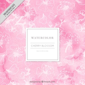 Pink watercolor cherry blossoms background