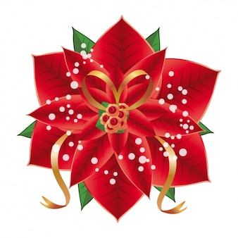 Poinsettia background design