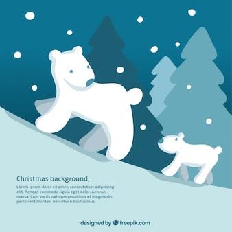 Polar bears background for christmas